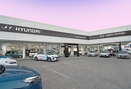 Hyundai Palma